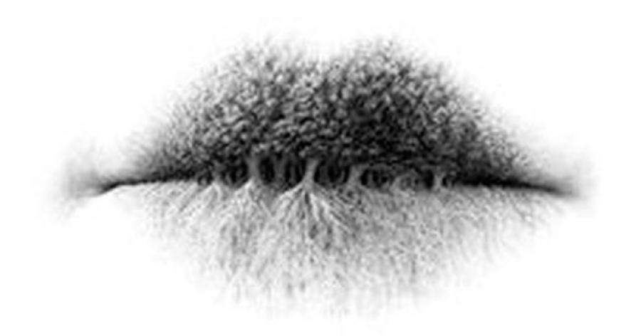 Te mit látsz meg először a képen? Rengeteget elárul a személyiségedről!