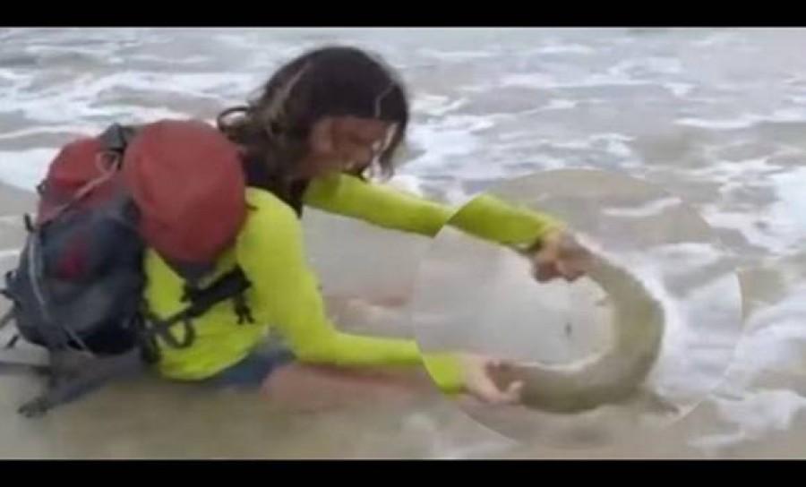 Ez a turista képet akart csinálni egy cápával, ám a terve balul sült el!