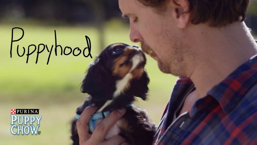 Hogy milyen az élet egy kiskutyával? Nézd meg ezt a videót és mosolyogj te is!
