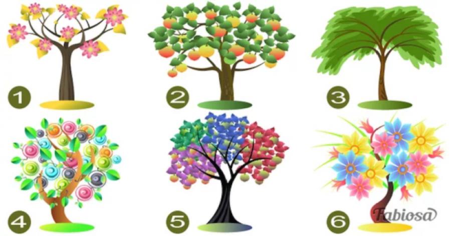 Válassz egy fát és olvasd el az elemzésed! Meglepő lesz a végeredmény!