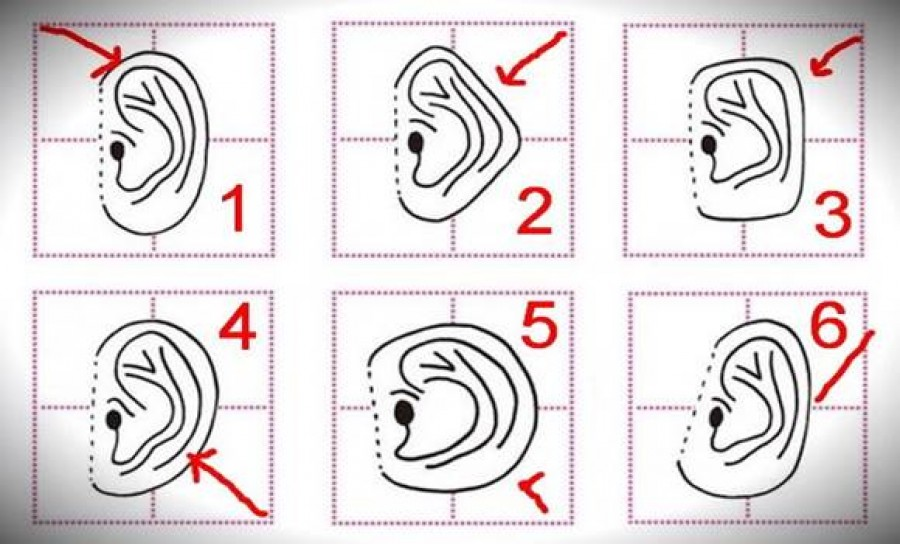 Nézd meg milyen a füled formája és tudd meg mit árul el rólad!