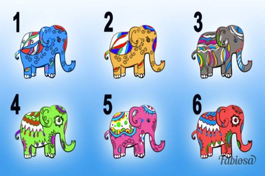 Válassz egy szerencsehozó elefántot és tudd meg mit üzen!